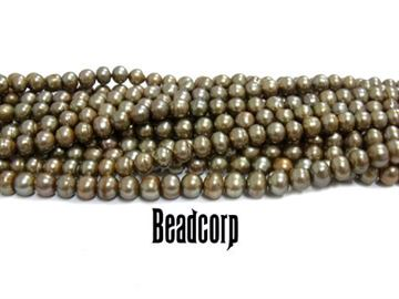 "5.5-6mm Champagne Fresh Water Pearls 15"" Strand"