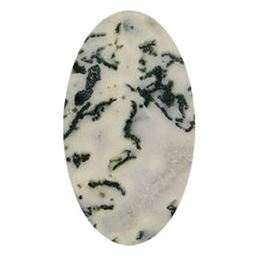 Oval Tree Agate Cabochons